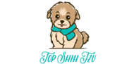 Top Shih Tzu